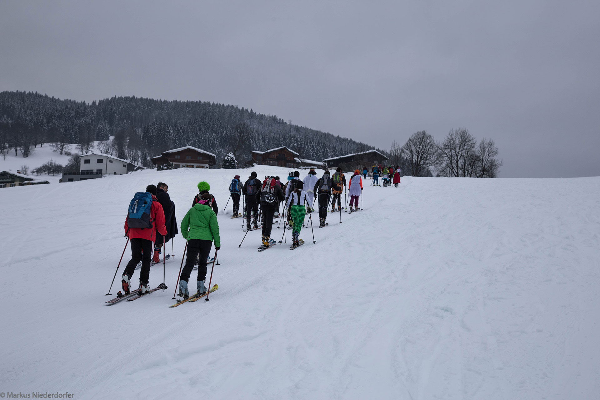 Gams Lodge Goldegg - Langlaufen