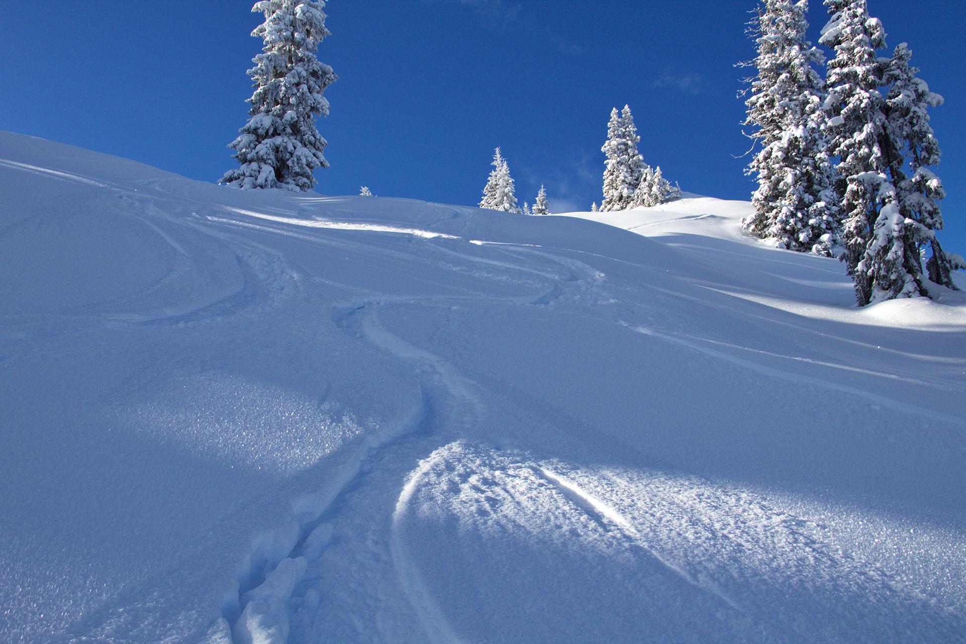Gams Lodge Goldegg - Ski- und Snowboard
