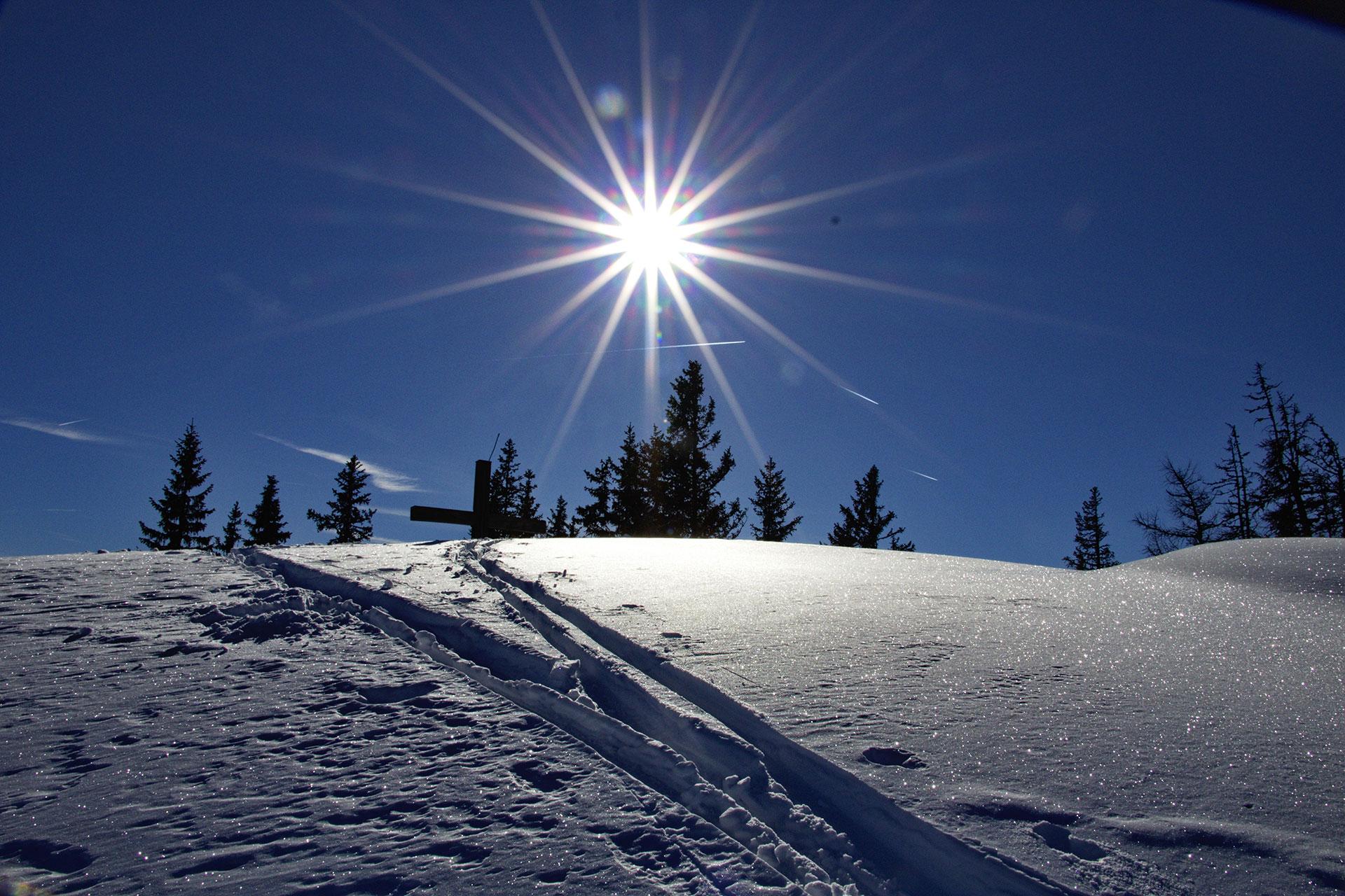 Gams Lodge Goldegg - Winterwandern